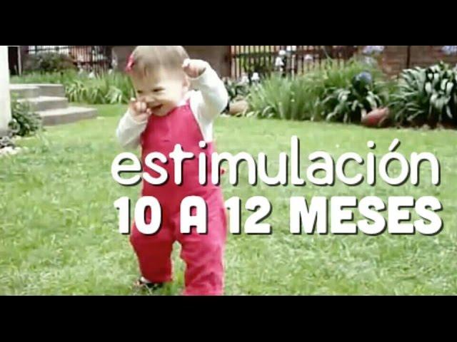 Actividades Bebé 10 A 12 Meses Estimulación Temprana Youtube