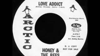"""Honey & The Bees """"Love Addict"""""""