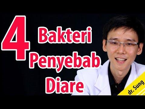 4 Bakteri Penyebab Diare ( Sakit Perut)