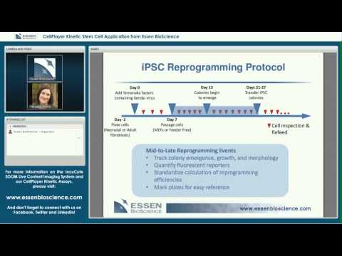 Essen BioScience Webinar Oct 3 2013 Stem Cell HD