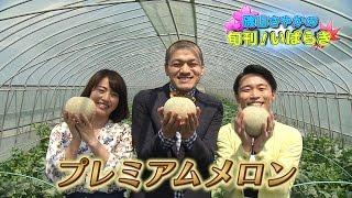 磯山さやかさんと芸人カミナリが地元茨城のメロンを紹介します。 茨城県...