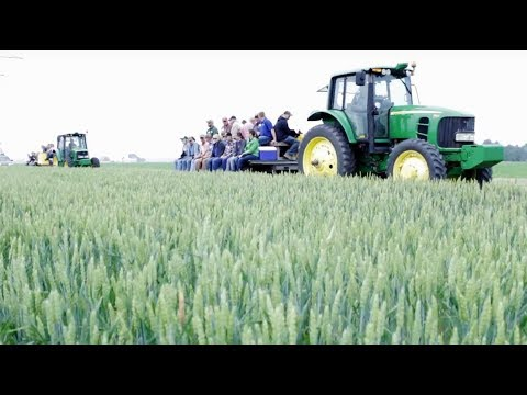 Growers learn how to increase yields at wheat field day