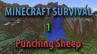 Minecraft Survival — Punching Sheep