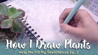 How I Draw Succulents and Plants // Help Me Fill My Sketchbook Ep  2