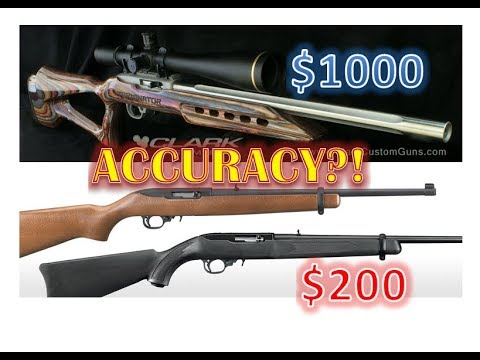 Ruger 10/22 Accuracy: $200 Factory Vs $1000 Matchgrade