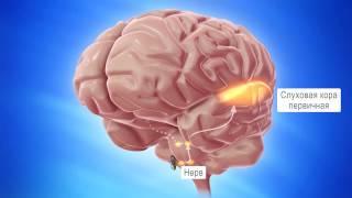 Томатис-терапия(, 2016-07-14T06:28:10.000Z)