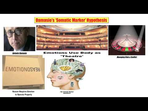 16) Damasio's 'Somatic Marker' Hypothesis