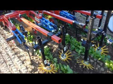 KULT Kress Argus Weeding Cultivator System For Marigold Flowers