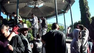 El Sabino, GTO 2010 2011