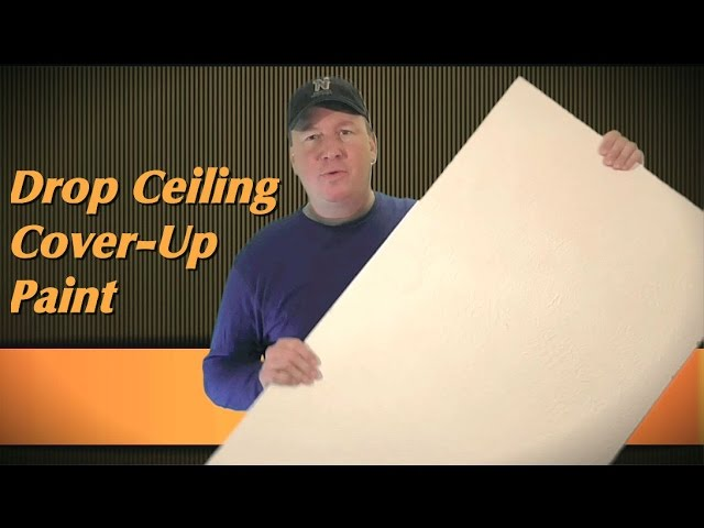 drop ceiling touch up paint review