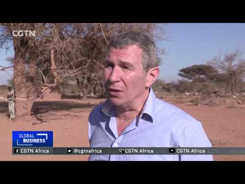 UN warns that rising food prices will lead to widespread hunger in the Horn of Africa
