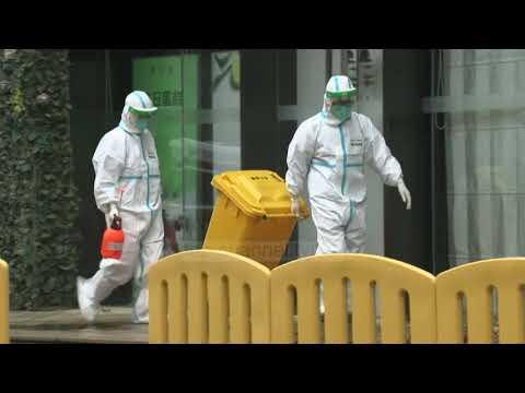 Download Top Channel/ Përsëri Kina! Konfirmon rastin e parë njerëzor të një sëmundjeje të re!