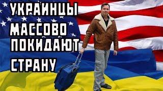 Украинцы массово едут в Америку? Жизнь в США и Канаде - минусы