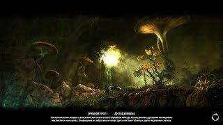 Elder Scrolls  Online - Грибной грот 1