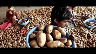Chaudhary Group (CSR)