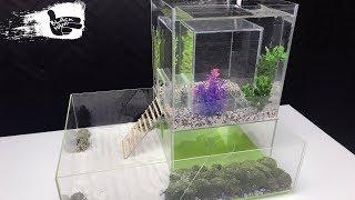 How to build a hamster aquariu…