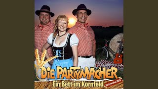 Ein Bett im Kornfeld (Partyversion 2013)