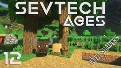 Minecraft Sevtech: Ages - BUFFALO DANCE and TOTEMIC