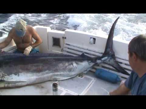 Pesca Deportiva en Salinas Ecuador 2011 con Lobo de Mar - Guia de pesca Eduardo Cañueto.mpg