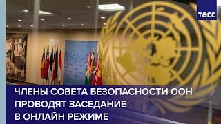 Члены Совета Безопасности ООН проводят заседание в онлайн режиме