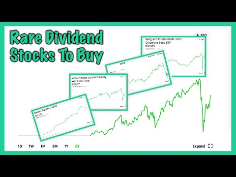 These Stocks Pay You Monthly - Dividend Investing