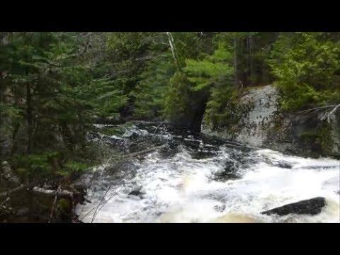 Crown Land Exploratory Trip (Day 1 Of 4) - Slogging Up Mink Creek