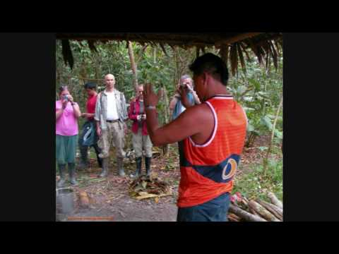 Rev. Douglas James Cottrell PhD: Ayahuasca sacred herbal drink of the Amazon