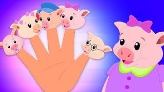 поросенок палец семья | рифмы для детей | Piggy Finger Family | Kids Songs