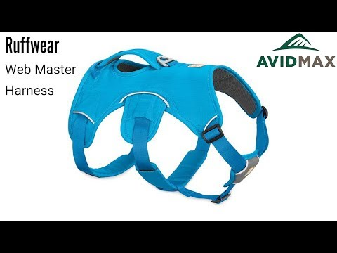 Ruffwear Web Master Harness Review | AvidMax