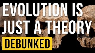Evolution is Just a Theory - Debunked (It's