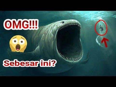 52+ Gambar Hewan Laut Prasejarah Gratis Terbaik