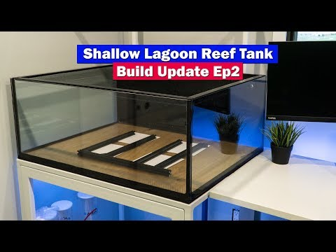 Shallow Reef Lagoon Update - Metal Stand, Sump Platform,DD Jumpguard Pro Saltwater Aquarium Build