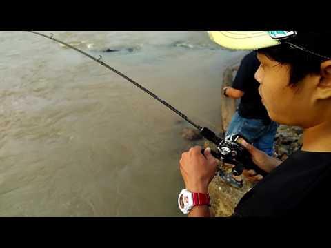 Badong Sungai Perak