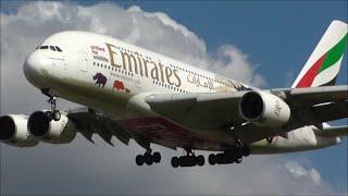 Midday Heavy Arrivals - London Heathrow Airport, LHR   31/03/16