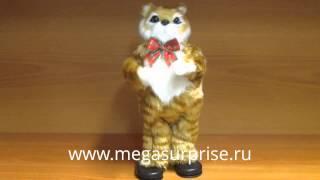 Кот танцор Ловелас.