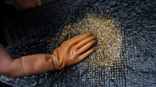 Как добывают золото  Gold mining