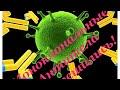 Поделки - Решение принято! Моноклональные антитела!