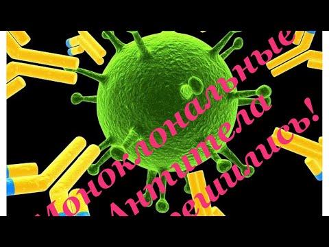 Решение принято! Моноклональные антитела!