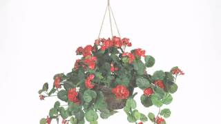 24 inch Red Geranium in Hanging Basket - artificialplantsandtrees.com