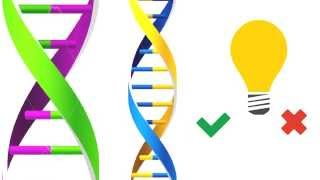 What is Genetic Engineering?
