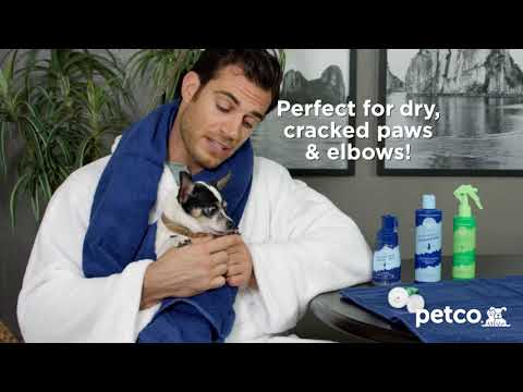 Henry Gets A Pawdicure With Dr. Evan Antin's Happy Pet