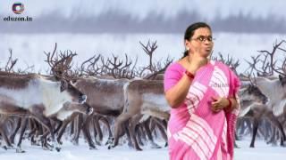 నాయకత్వ లక్షణాలు Telugu Story On Leadership Qualities