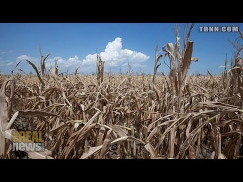 The Real Hunger Games - Big Commodity Traders Control World Grain Market