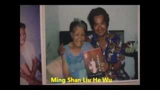 Yi Quan : Hommage à WANG Yu Fang.