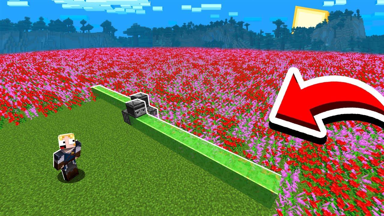 SUPER FARM DE FLORES AUTOMÁTICA! - Forever Mapa 3 #135