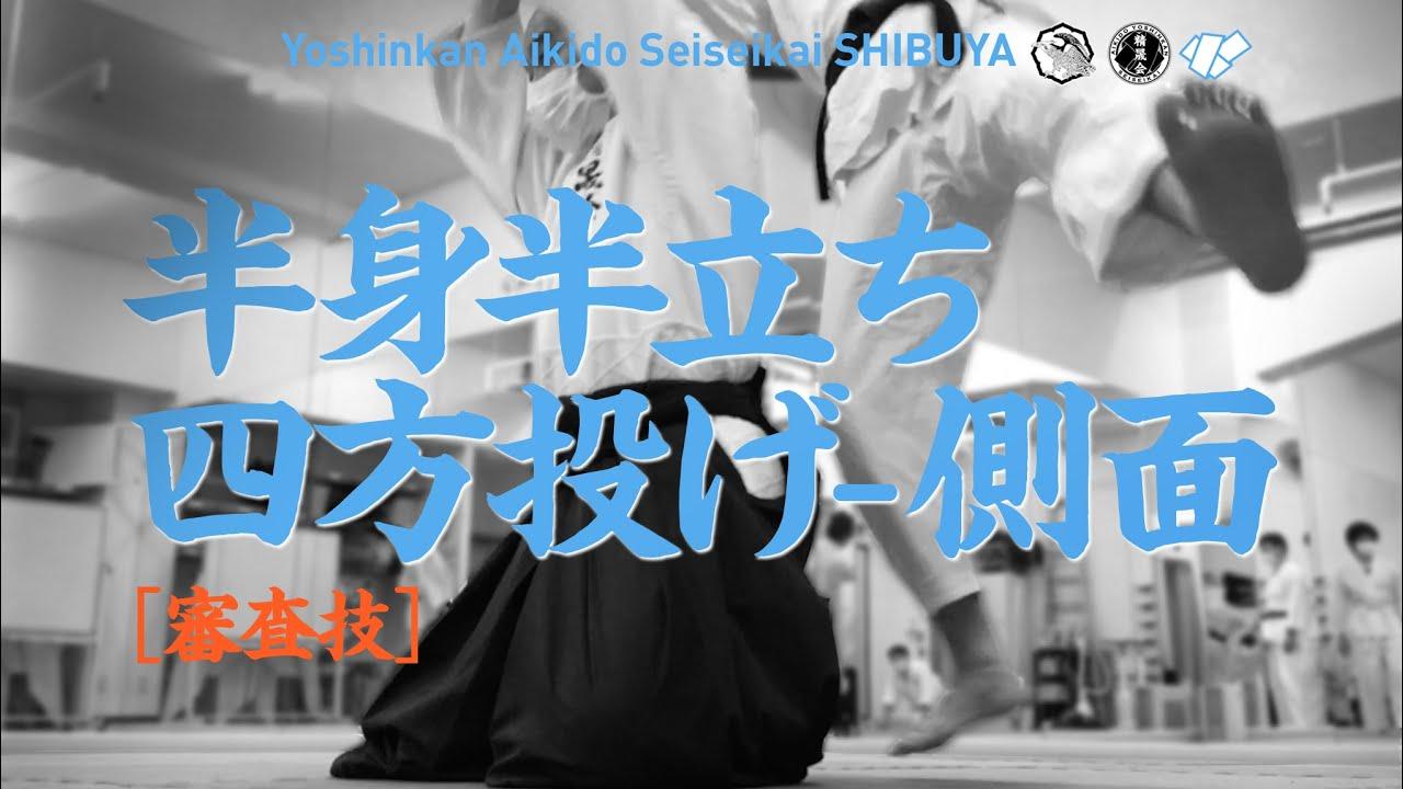 [審査技|半身半立ち四方投げ - 側面]養神館合気道 精晟会渋谷の稽古