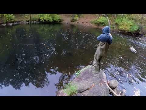 River Bum Series: Vlog #4 (Atlantic Salmon)