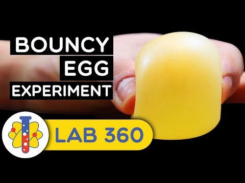 Kevin Johnson - How To Make A Bouncy Ball From An Egg!