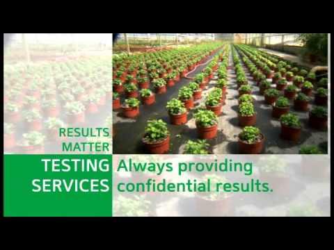Agdia Inc. presentation-Plant disease & GMO detection kits