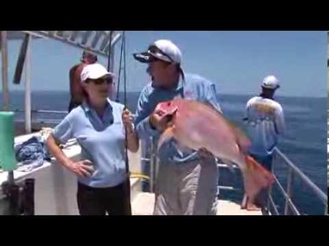 Port Douglas Reef Fishing
